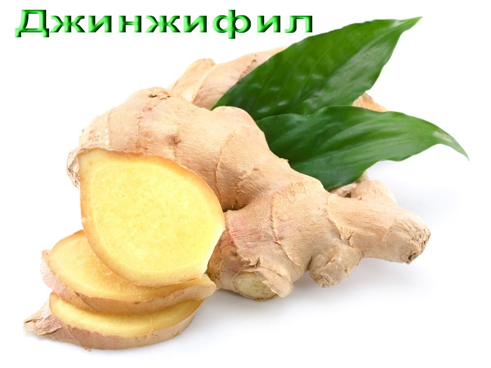 Джинджифил, Ginger