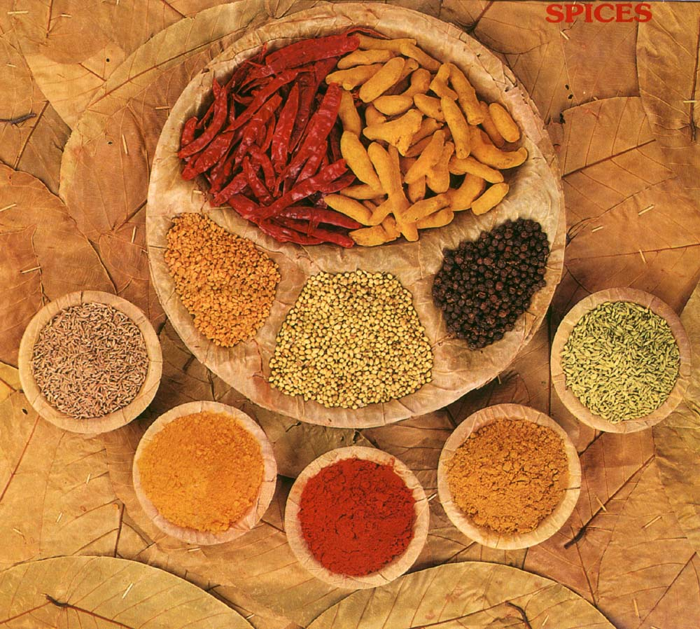 a830e5de-indian_spices