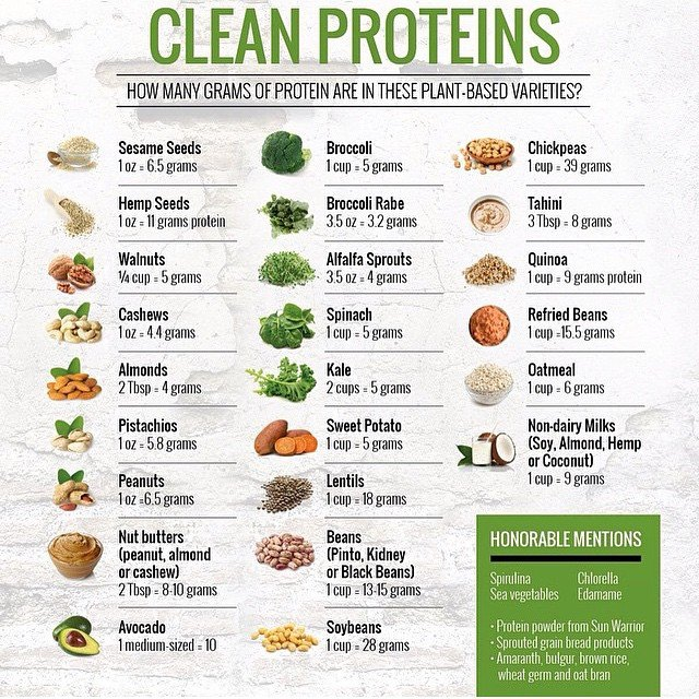 Clean vege plant proteins