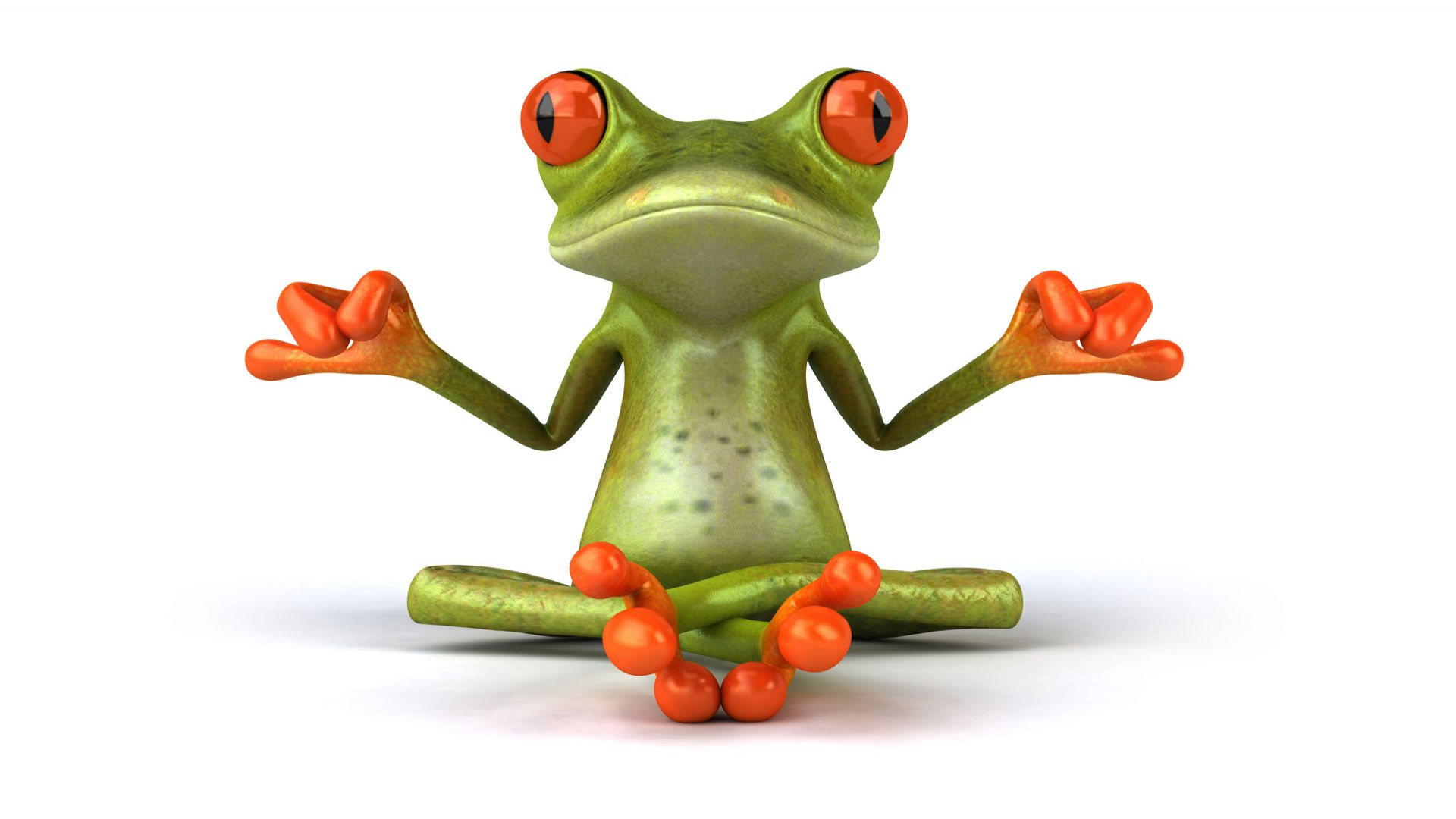 Frogs_wallpapers_294