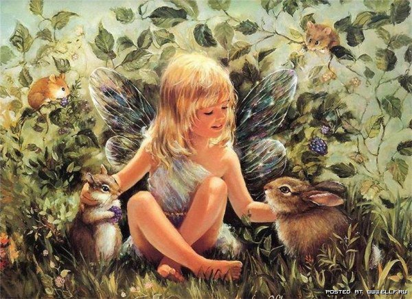 Lovely child faery