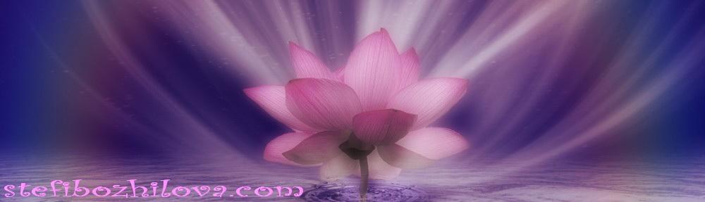 Violet-Pink_Lotus_Rainbow