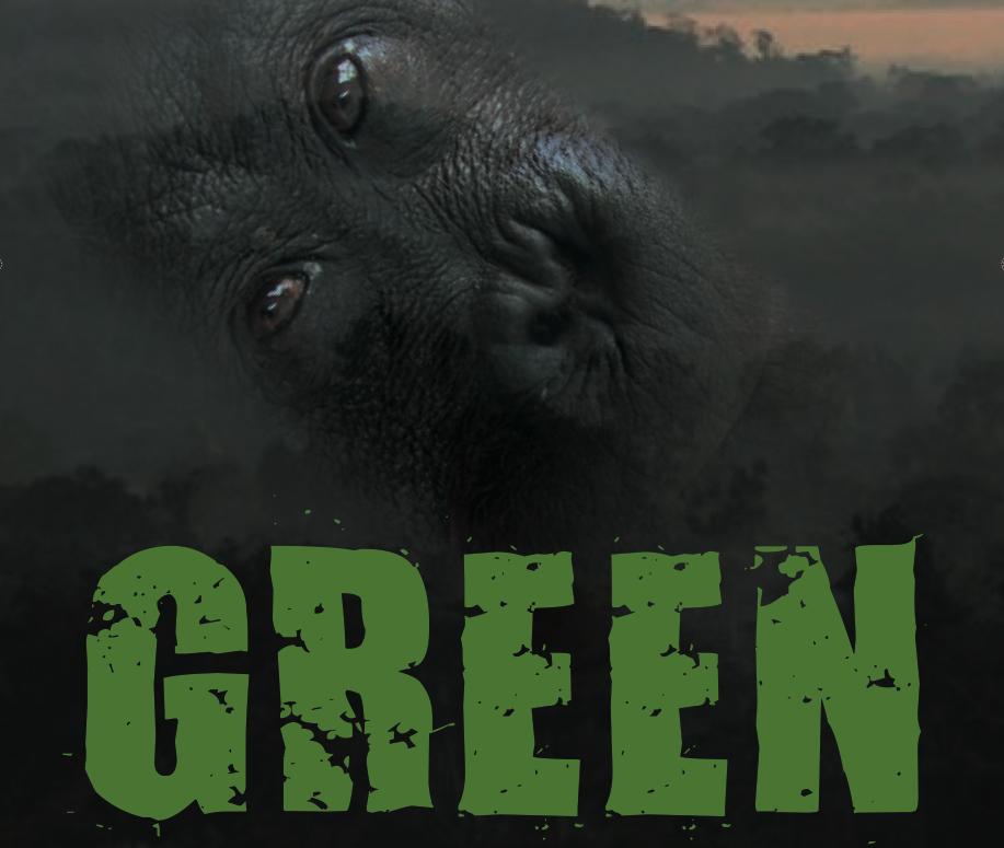 green-flyer