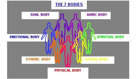 7 bodies pic