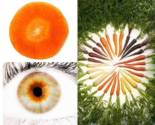 Carrot eye iris shape