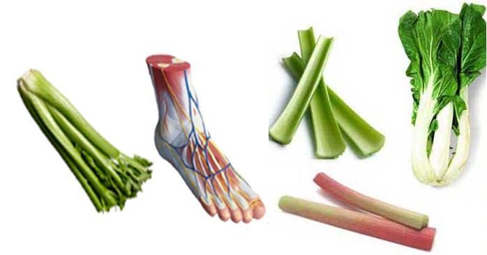 Celery bones shape