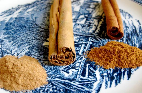 Цейлонска канела (Cinnamomum Zeylanicum) в ляво и Касия (Cinnamomum cassia) в дясно