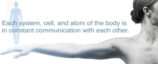 Всяка система, клетка, огран и атом в тялото са в постоянна комуникация помежду си!