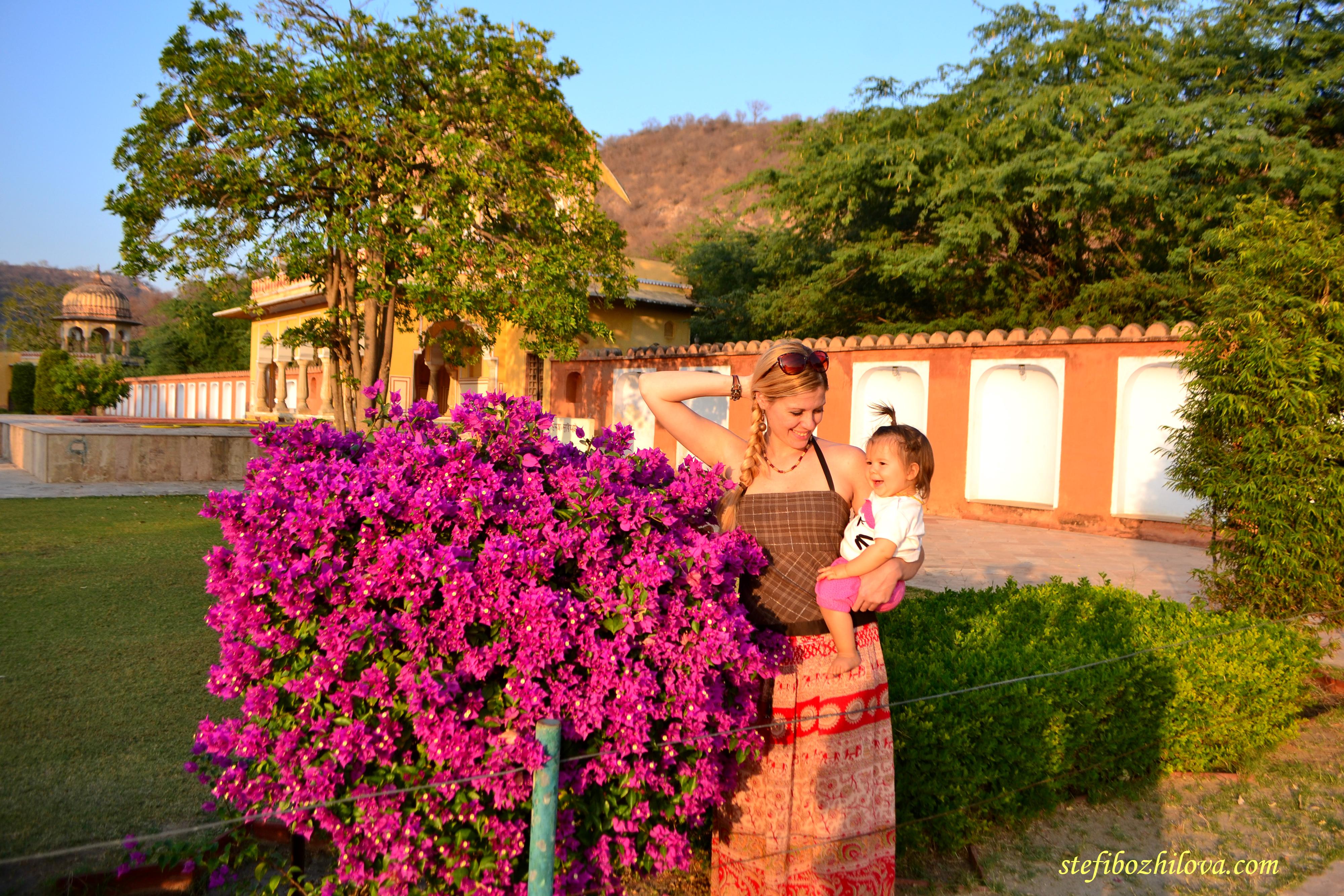 В прекрасната зелена цветна градина в Джайпур